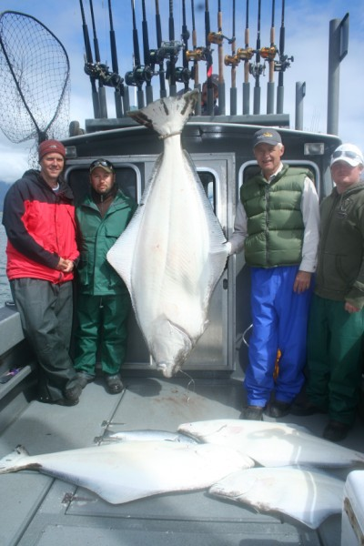 Nice load of halibut, including a 215-pounder, from Gustavus, Alaska.