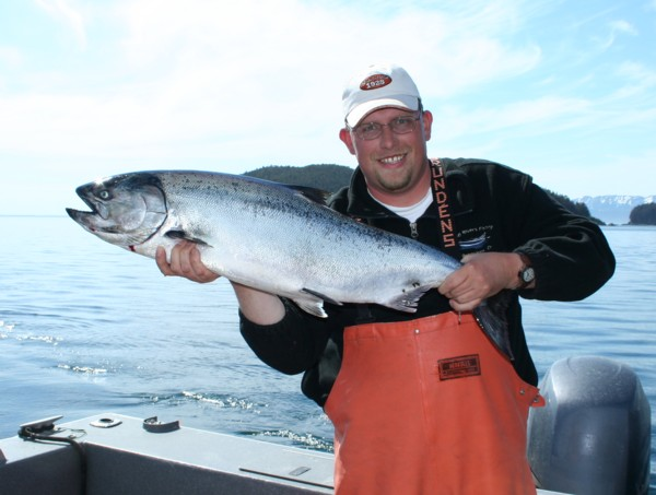 Gutsavus Alaska king salmon late May