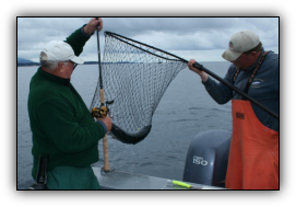 Capt. Andy Martin nets a coho salmon for a customer in Alaska.
