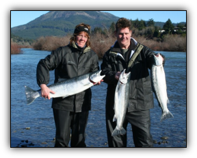 Three Chetco River chromers caught side-drifting between Ice Box and Social Security Bar.