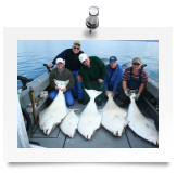 Alaska Halibut Photo Gallery, trophy halibut photos.