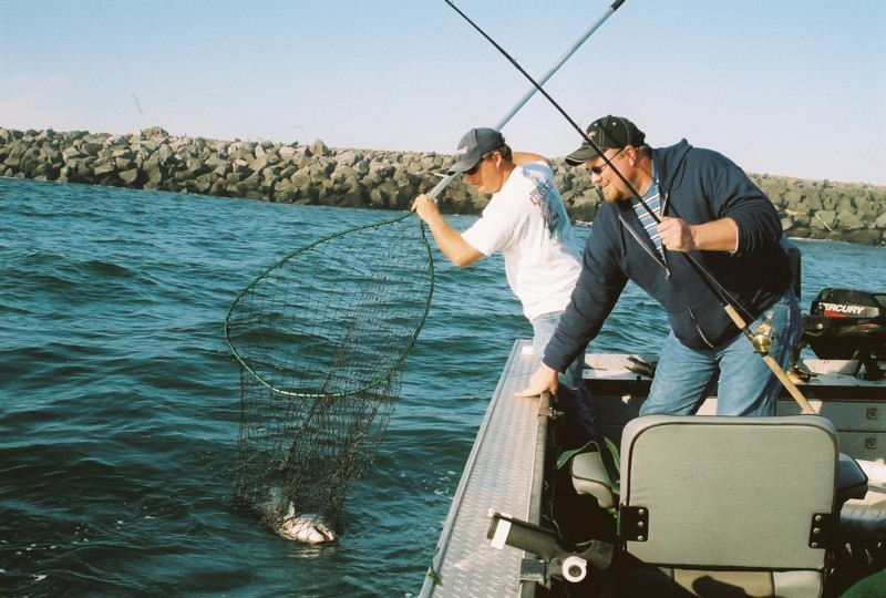 Tillamook bay salmon fishing plug cut herring fishing for Tillamook bay fishing
