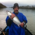 Smith River coho, caught and released.